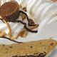 Peanut Butter Silk - Peanut Butter Silk at Perkins Family Restaurants