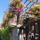 Cafe Nola - Bainbridge Island, WA